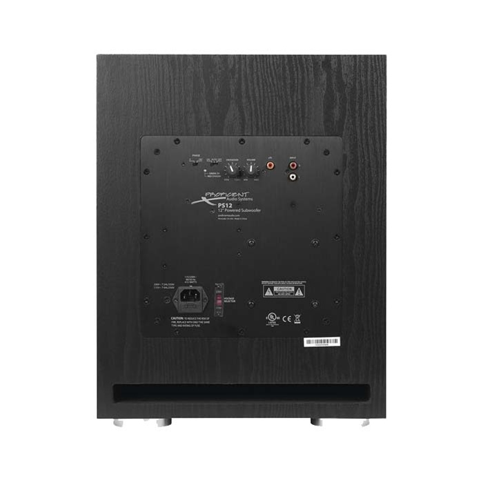 Proficient Audio PS12 12-Inch With a 250-watt Class D